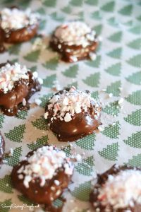 Chocolate-Peppermint-Cookies_edited-1