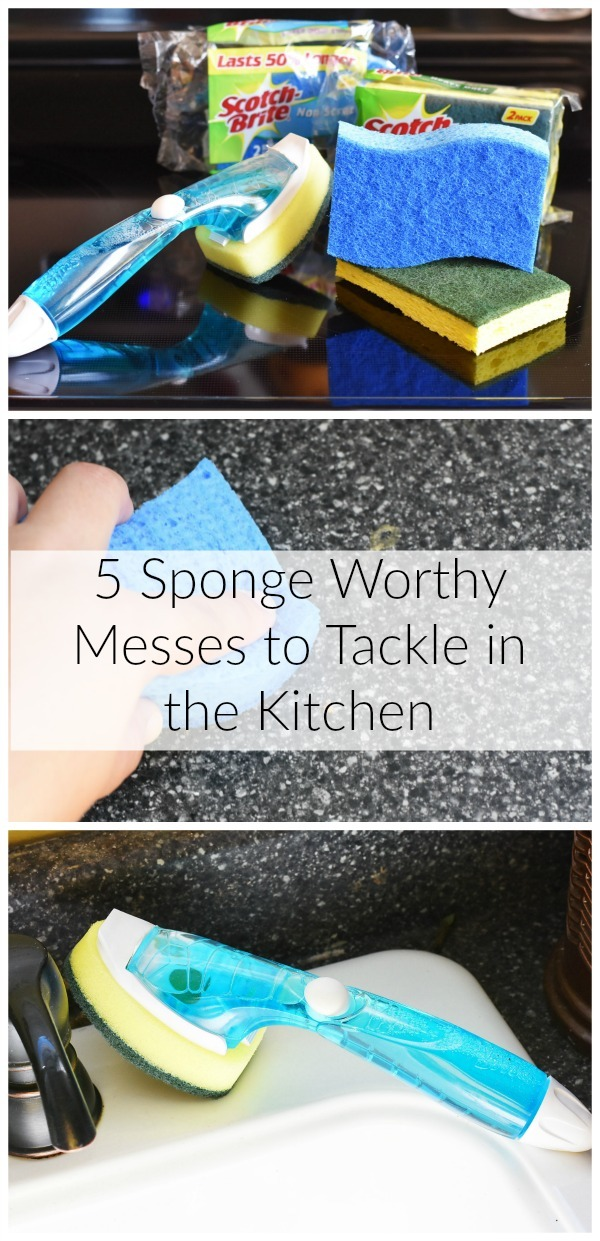 sponge-worthy-messes