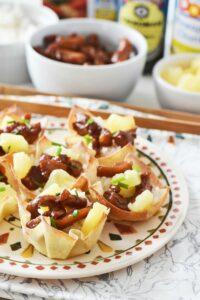 Teriyaki Chicken, Rice & Pineapple Wontons