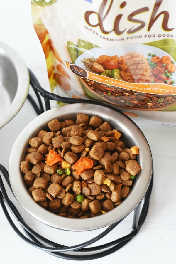 Rachel Ray Dish dog food in bowl1