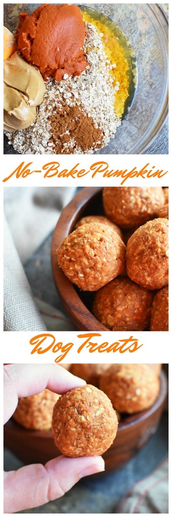 No-Bake Pumpkin Dog Treats