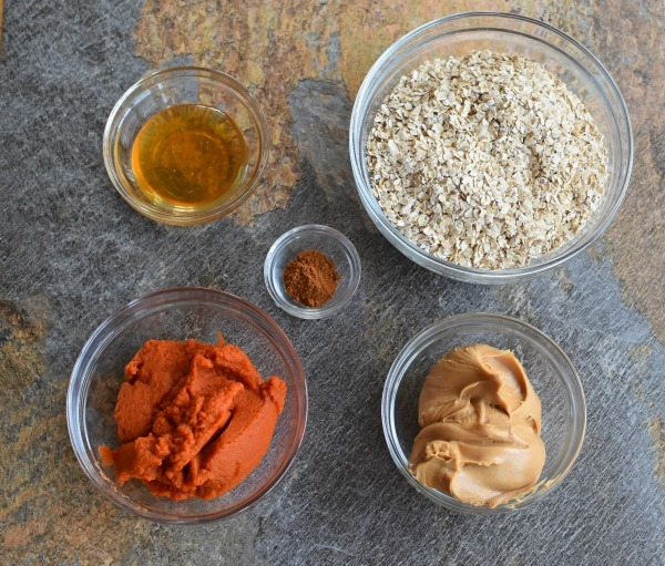 Pumpkin dog treats ingredients1