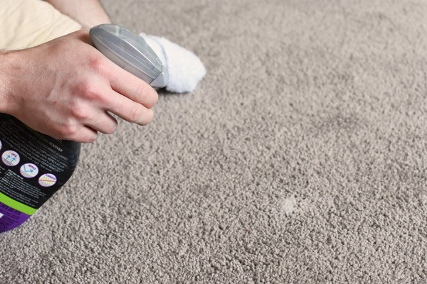 Stainmaster Pet Carpet Cleaner
