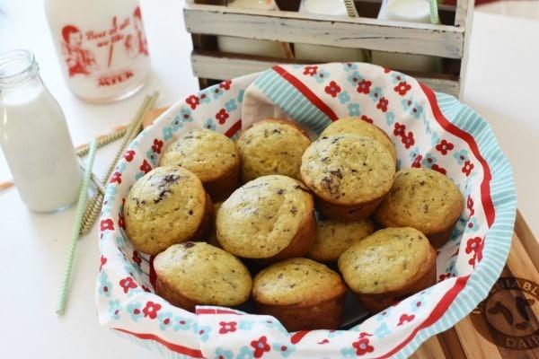 Avocado Banana Chocolate Chip Muffins1