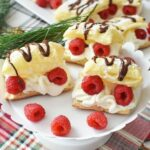 Chocolate and Raspberries Cream Puffs1