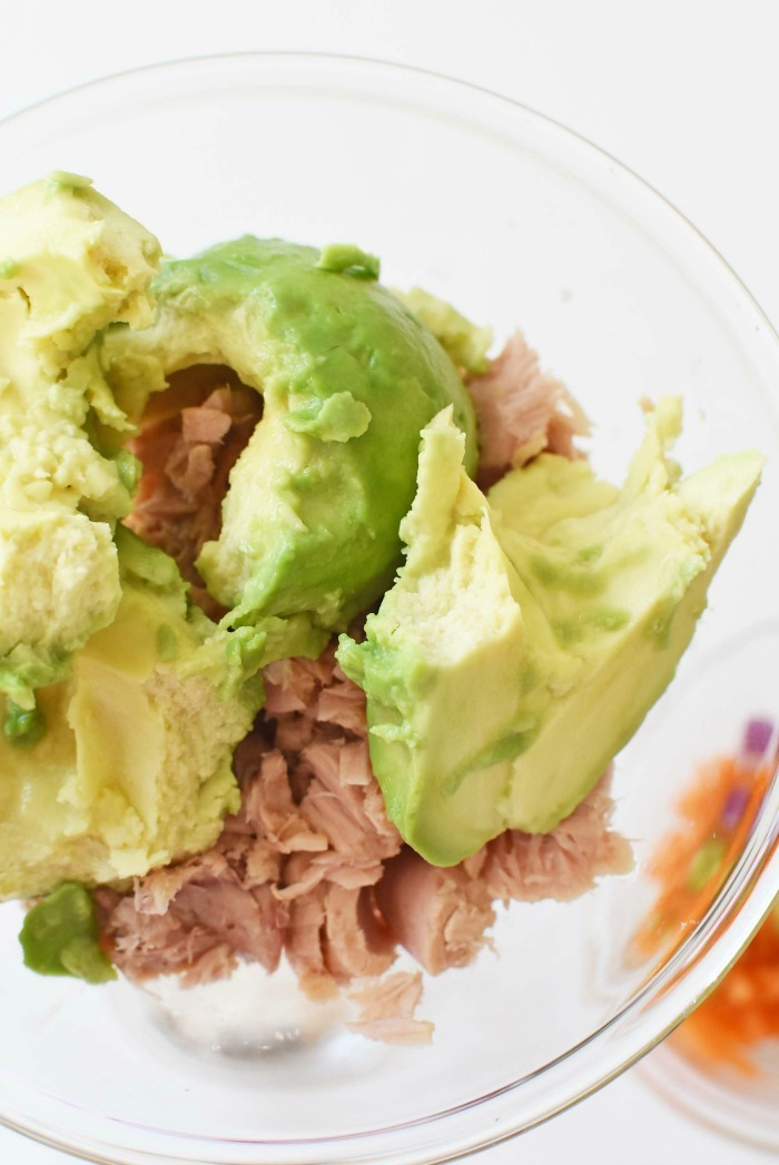 avocado in bowl with tuna