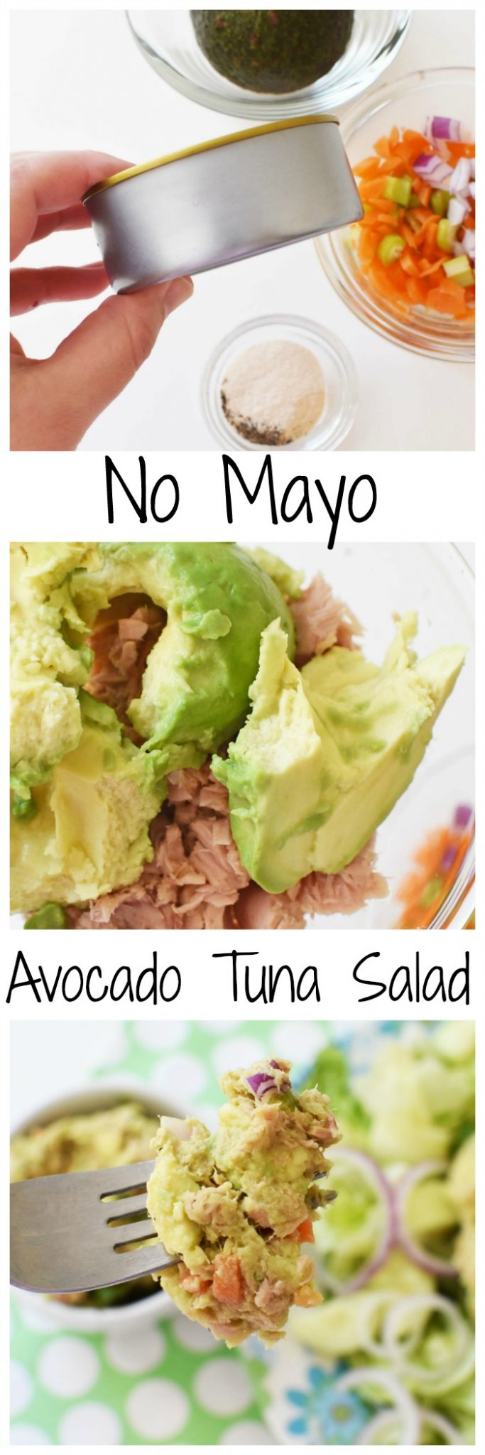 No Mayo Avocado Tuna Salad