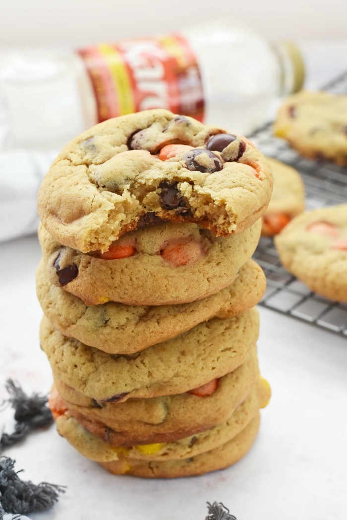 Chocolate Chip Harvest Cookies