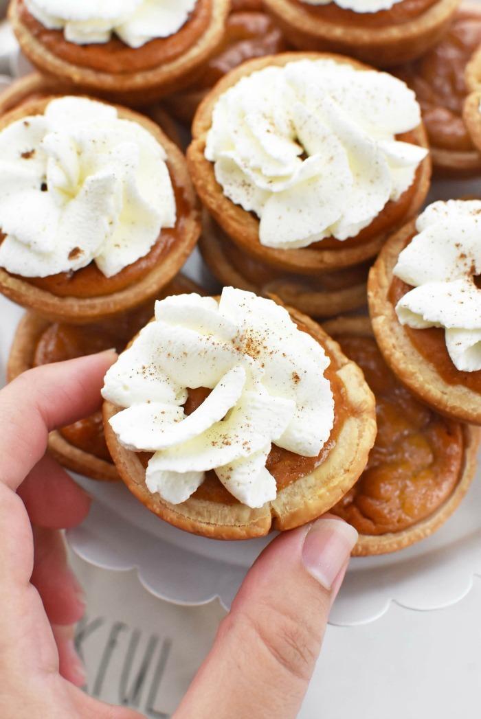 Mini Pumpkin Pies in Muffin Tin
