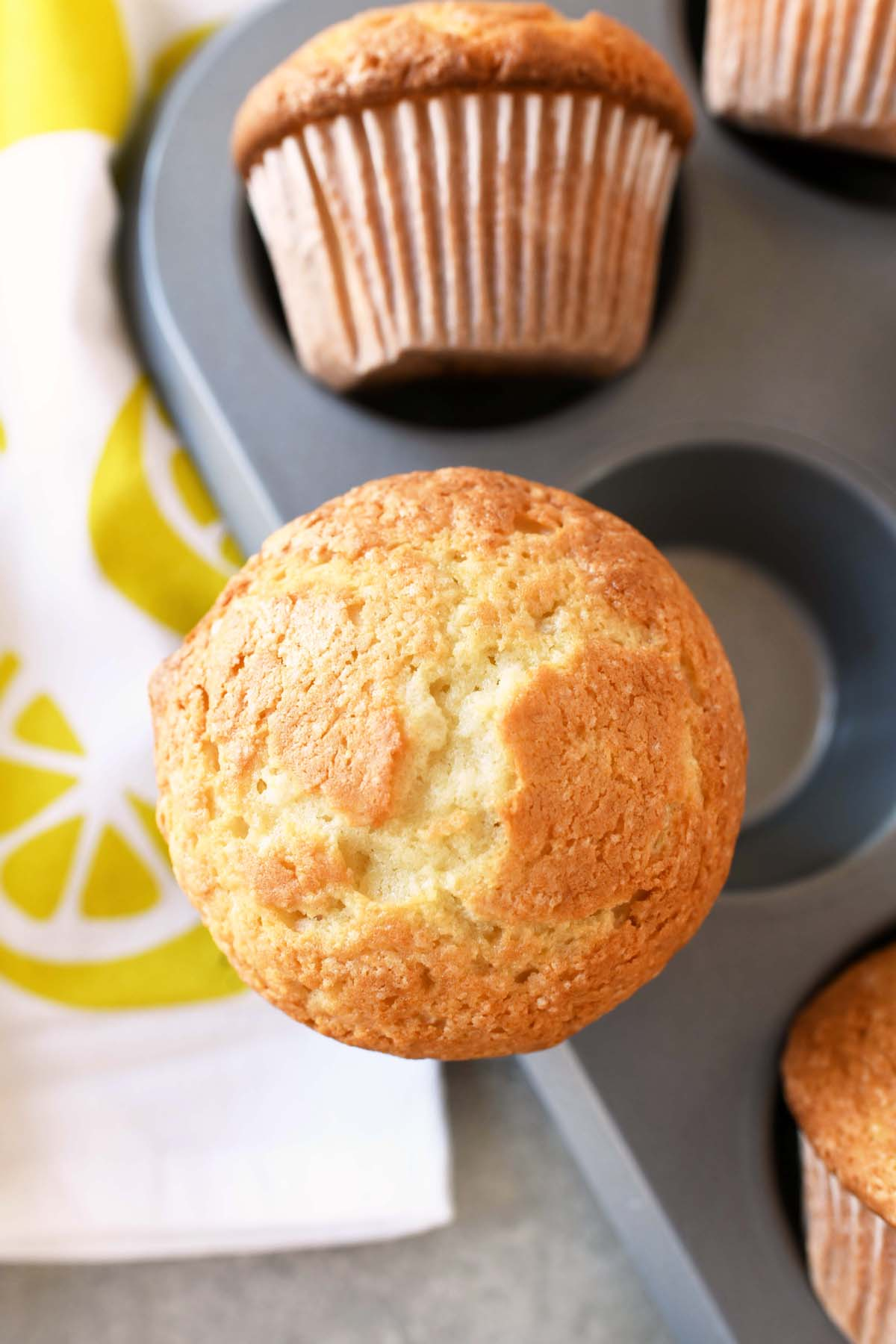 Lemon Burst Muffins - a single lemon outside of a muffin tin.